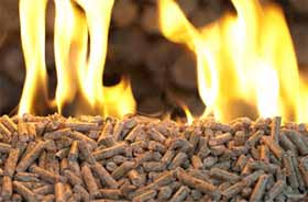 Biomass Pellets - An Alternative to Fossil Fuels